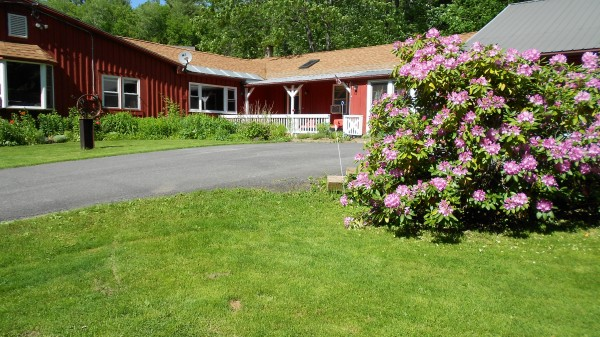 pet friendly bed and breakfast in western ma