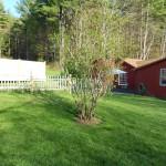 Spring at Cavalier Cottage