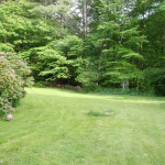 The cottage garden