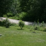 Landscaped garden and E. Oxbow